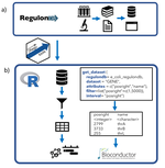 Programmatic access to bacterial regulatory networks with regutools