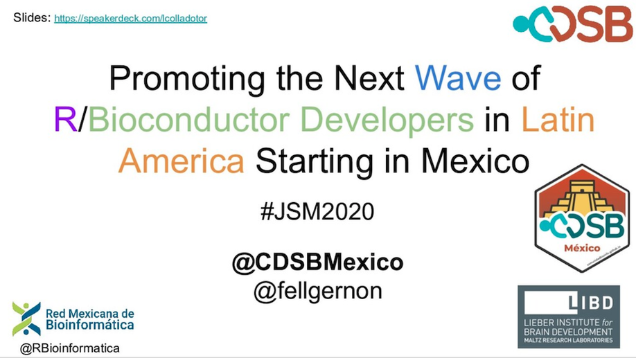 Promoting the next wave of R/Bioconductor developers in Latin America starting in Mexico